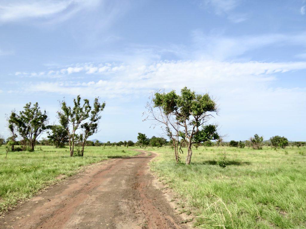Shai Hills Resource Reserve Ghana Guide