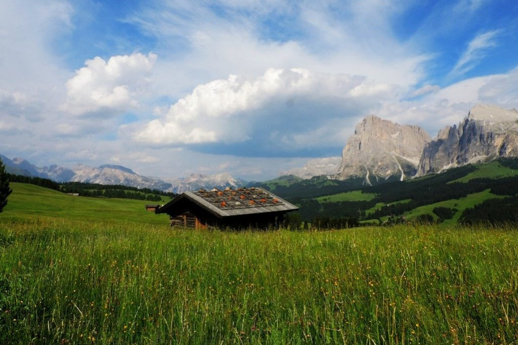 Best day hikes in the Dolomites - Alpe di Suisi