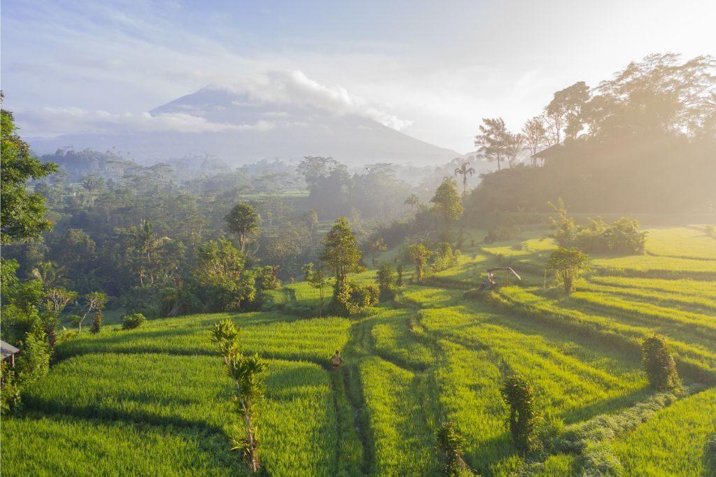 Mount-Agung-behind-rice-fields-near-Amed-Bali